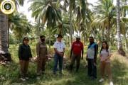 Karantina Pertanian Merauke Sasar Kampung Kelapa di Makaling Jadi Desa Gratieks